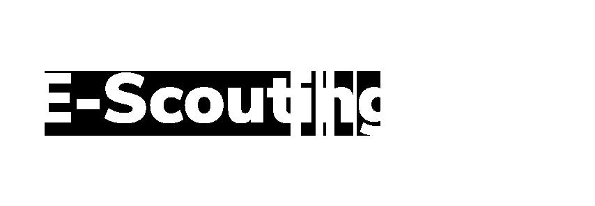 E-Scouting